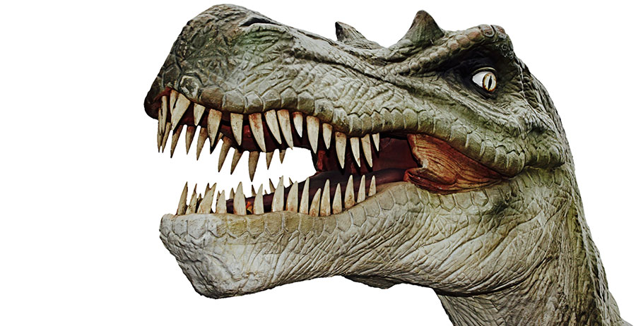 Dinosaurier willhaben